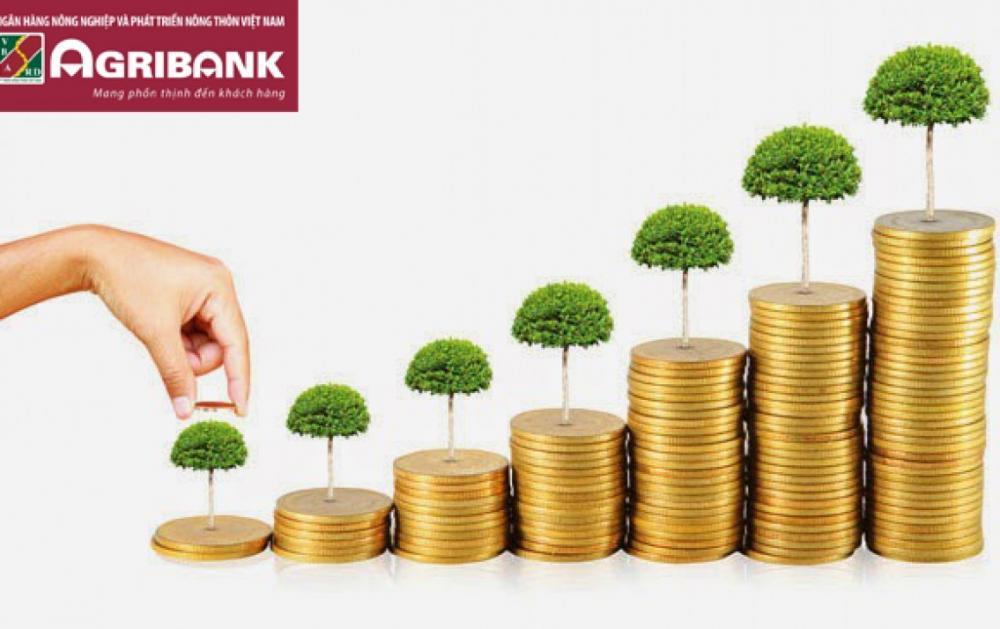 Tiền gửi tiết kiệm không kỳ hạn Agribank