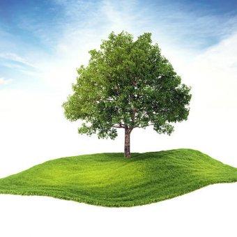Vay mua đất nền như thế nào để ít rủi ro nhất?