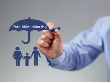 Hướng dẫn cách đọc bảng minh họa quyền lợi bảo hiểm nhân thọ