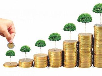 Có 300 triệu nên đầu tư vào đâu để sinh lời tốt nhất?